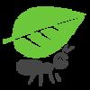 Webcargo Dev